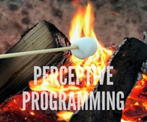 Beach Bonfires for Groups: PERCEPTIVE PROGRAMMING